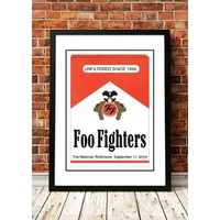 Foo Fighters 'The National' Virginia, USA 2014
